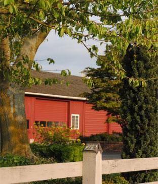 Maplehurst Farm